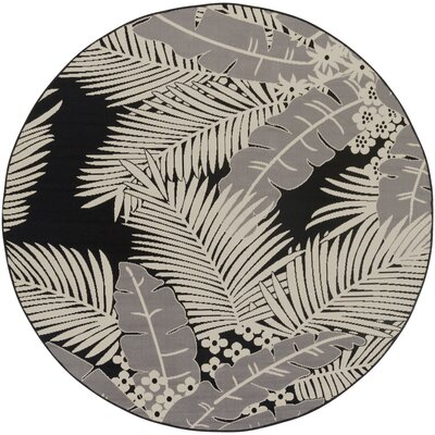 Bethel Black Indoor/Outdoor Area Rug Rug Size: Round 710