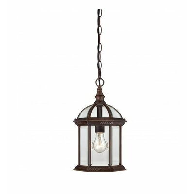 Newbrook 1-Light Outdoor Hanging Lantern