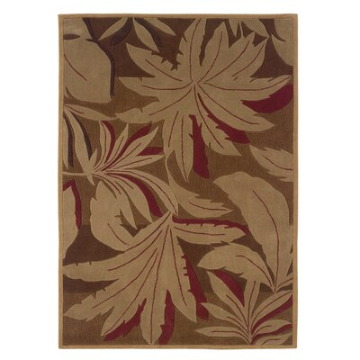 Dali Hand-Woven Brown/Tan Area Rug Rug Size: 8 x 10
