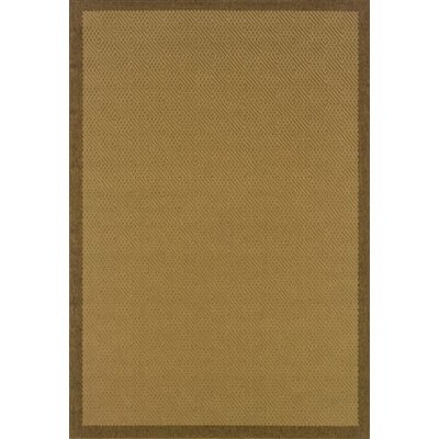 Goldenrod Beige/Brown Indoor/Outdoor Area Rug Rug Size: 18 x 37