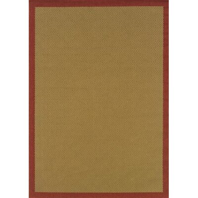 Goldenrod Brown Area Rug Rug Size: 37 x 56