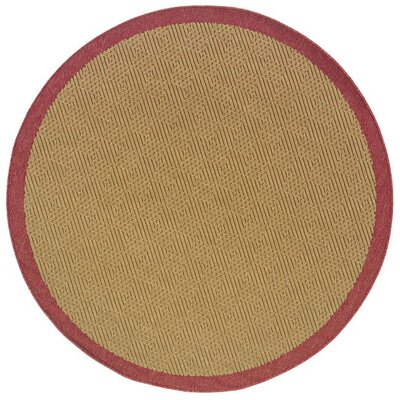 Goldenrod Brown Area Rug Rug Size: Round 710