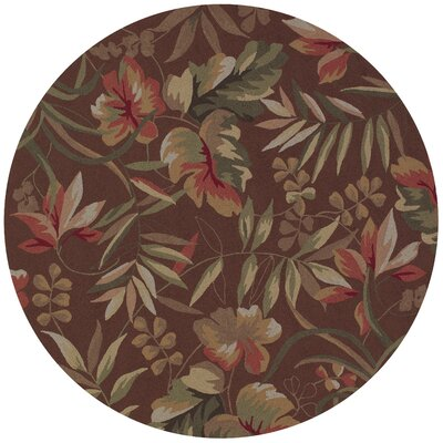 Wallingford Hand-Woven Light Cocoa Indoor/Outdoor Area Rug Rug Size: Round 710