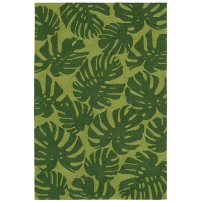 Rachael Hand-Tufted Green Indoor/Outdoor Area Rug Rug Size: 76 x 96
