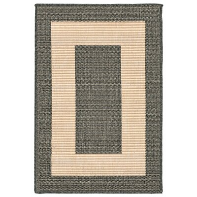 Bynum Brown Indoor/Outdoor Area Rug Rug Size: 111 x 211
