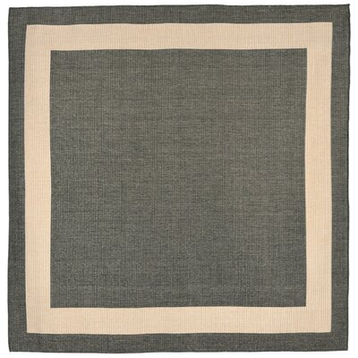 Sloane Brown Indoor/Outdoor Area Rug Rug Size: Square 710