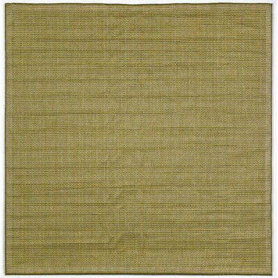 Sloane Green/Ivory Texture Indoor/Outdoor Area Rug Rug Size: Square 710