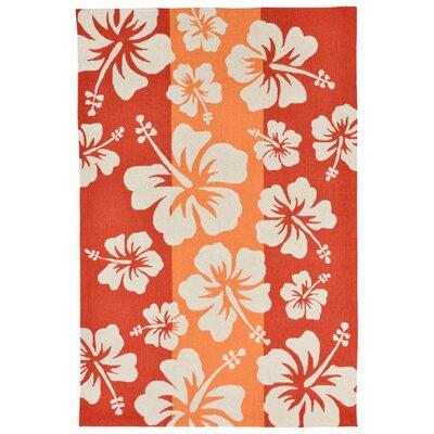 Rachael Hand-Tufted Orange Indoor/Outdoor Area Rug Rug Size: 76 x 96