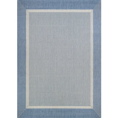 Karakum Texture Blue/Gray Indoor/Outdoor Area Rug Rug Size: 39 x 55