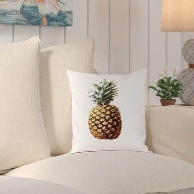 Wendell Pineapple Photo Up To Outdoor Throw Pillow Size: 16 H x 16 W x 2 D