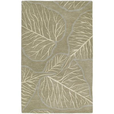 Newton Chocolate Area Rug Rug Size: 2 x 3