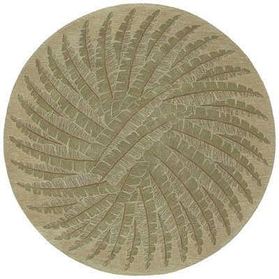 Newport Gold Palm Rug Rug Size: Round 39