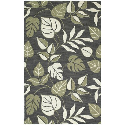 Jessamine Rug Rug Size: Rectangle 2 x 3