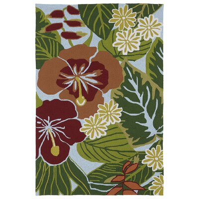Jamaica Hand-Tufted Indoor/Outdoor Area Rug Rug Size: 2 x 3
