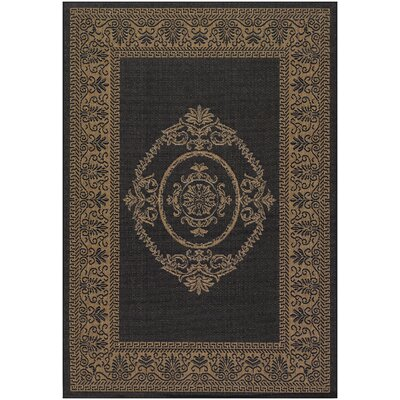 Southard Black/Brown Indoor/Outdoor Area Rug Rug Size: 53 x 76