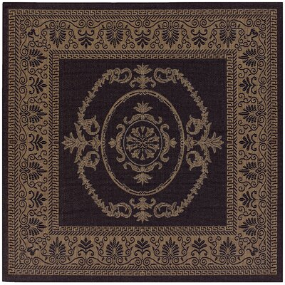 Celia Black/Brown Indoor/Outdoor Area Rug Rug Size: Square 7'6