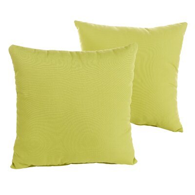 Parrish Green Indoor/Outdoor Throw Pillow Size: 22 H x 22 W x 6 D
