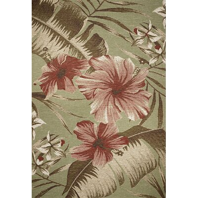 Maguire Sage Green Floral Hibiscus Indoor/Outdoor Area Rug Rug Size: Rectangle 53 x 77