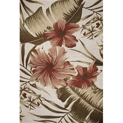 Maguire Hibiscus Indoor/Outdoor Area Rug Rug Size: 53 x 77