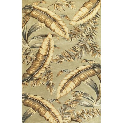 Murray Pale Green Ferns Area Rug Rug Size: Runner 26 x 10
