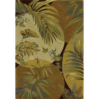 Murray Breezes Coral/Ivory Area Rug Rug Size: Rectangle 86 x 116