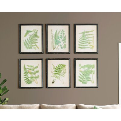 Ferns 6 Piece Framed Graphic Art Set