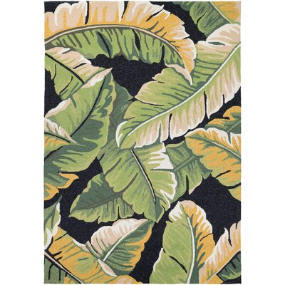 Amberjack Rainforest Forest Hand-Woven Green/Black Indoor/Outdoor Area Rug Rug Size: 36 x 66