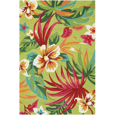 Amberjack Painted Hand-Woven Fern/Red Indoor/Outdoor Area Rug Rug Size: 36 x 56