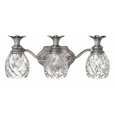 Ironwood 3-Light Vanity Light Finish: Polished Antique Nickel