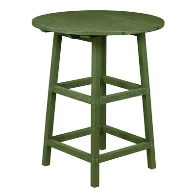 Zander Pub Table Finish: Cactus Green