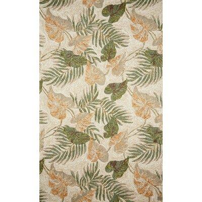 Demirhan Tropical Leaf Outdoor Rug Rug Size: 36 x 56