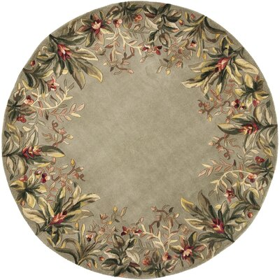Marion Sage Tropical Border Area Rug Rug Size: Round 76