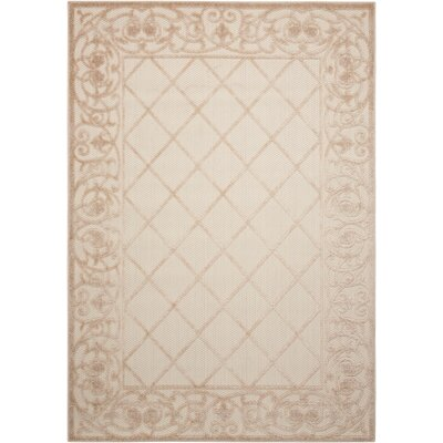 Seaside Cream Indoor/Outdoor Area Rug Rug Size: 36 x 56