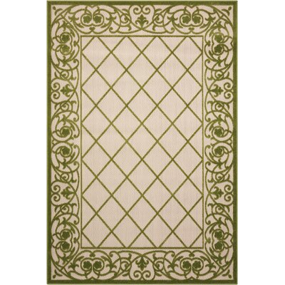 Seaside Green/Beige Indoor/Outdoor Area Rug Rug Size: 36 x 56