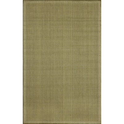 Cecile Green/Ivory Texture Indoor/Outdoor Area Rug Rug Size: Rectangle 33 x 411