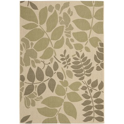 Amaryllis Cream/Green Indoor/Outdoor Rug Rug Size: 53 x 77