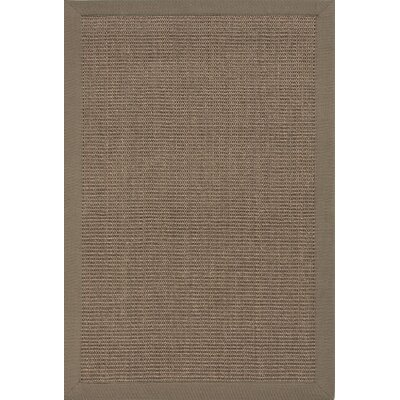 Mosqueda Plus Chocolate Solid Area Rug Rug Size: 8 x 10