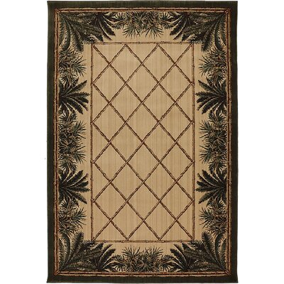 Newcomb Beige/Green Area Rug Rug Size: 5' x 8'
