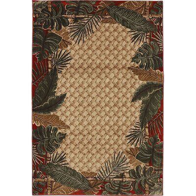 Newcomb Rain Forest Ruby/Beige Area Rug Rug Size: 5 x 8