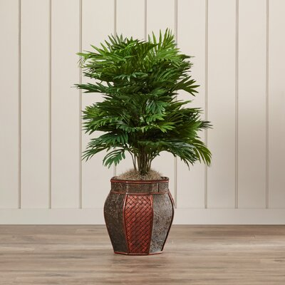 Areca Palm Floor Plant with Decorative Vase