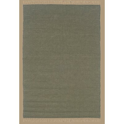 Landenberg Hand-Woven Green Area Rug Rug Size: Rectangle 53 x 76