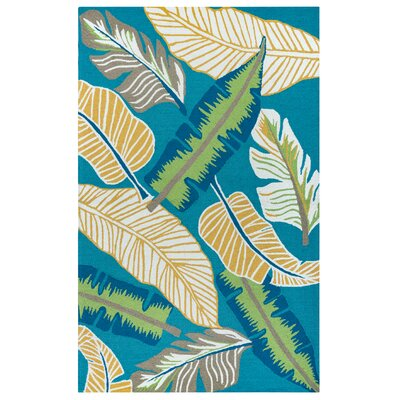 Mako Hand-Tufted Teal Indoor/Outdoor Area Rug Size: Rectangle 5 x 76