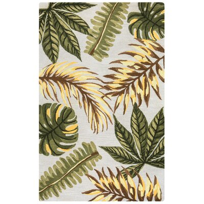 Minnie Hand-Tufted Sage Area Rug Rug Size: Rectangle 5 x 8