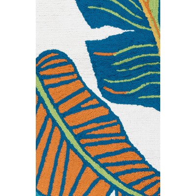 Mako Hand-Tufted Indoor/Outdoor Area Rug Size: Runner 26 x 8