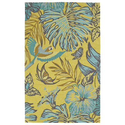 Navarre Handmade Yellow Indoor/Outdoor Area Rug Rug Size: Rectangle 5 x 76