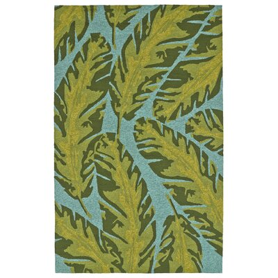 Navarre Handmade Green Indoor/Outdoor Area Rug Rug Size: 3 x 5