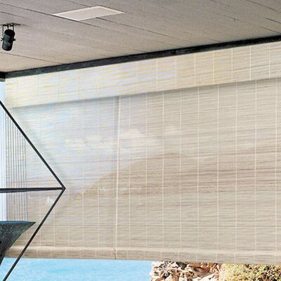 Sheer Beige Outdoor Roll-Up Shade Size:  60 W x 72 L