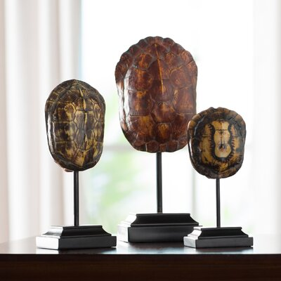 3 Piece Turtle Shells on Stand Sculpture