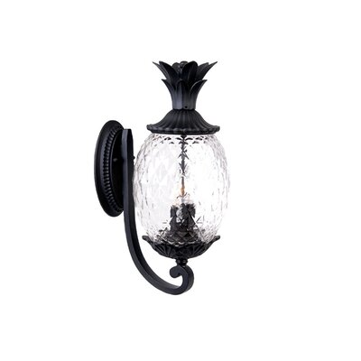 Waterbury 3-Light Outdoor Sconce Finish: Matte Black