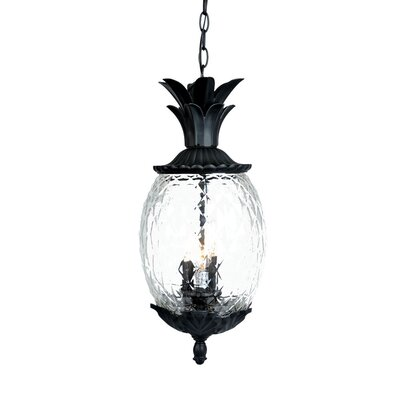 Waterbury 3-Light Outdoor Pendant Finish: Matte Black